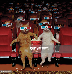 Cats wearing 3D glasses in a movie theatre, eating popcorn.