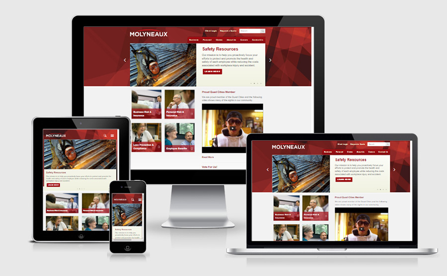 Molyneaux Responsive website